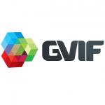 Разработка логотипа для GVIF