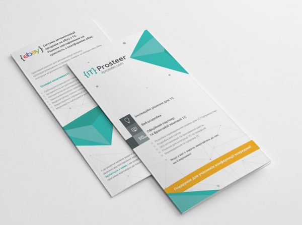 Brochure for IT Prosteer