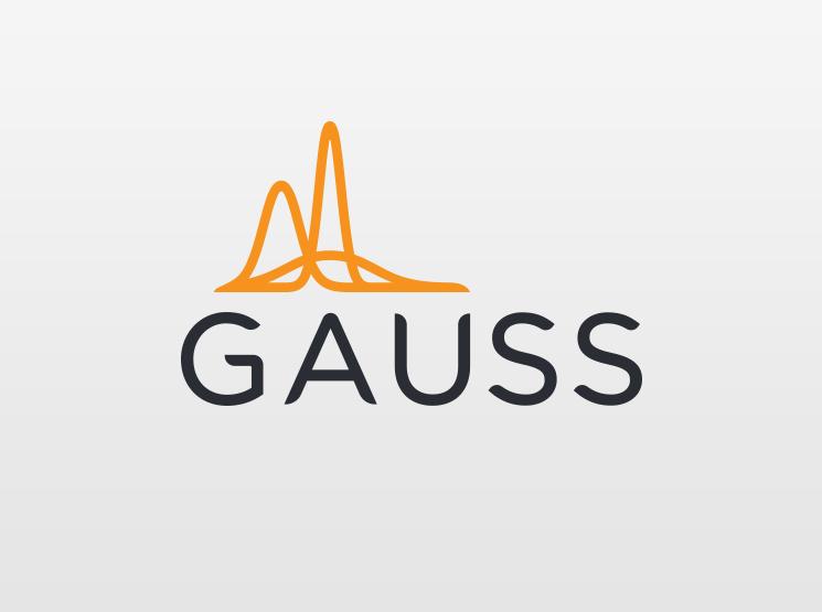 Брендинг Gauss