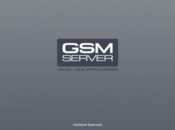 GsmServer Brand Book